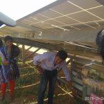 Solar Power Plant 7