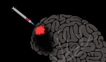 Delivering Drugs To The Brain Is Now A Reality